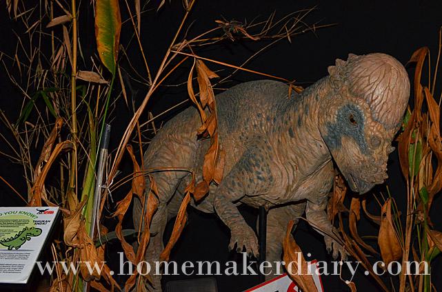 Herbivore dinosaurs in pusat sains negara a homemaker s diary